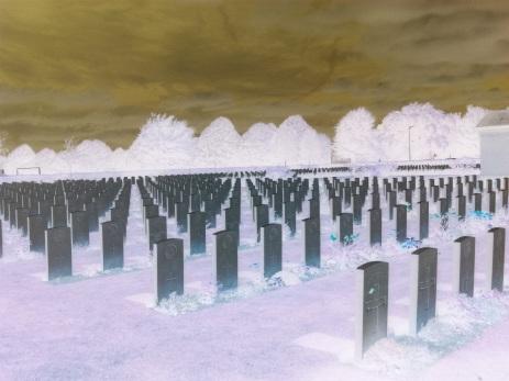 Il cimitero britannico di Bayeux